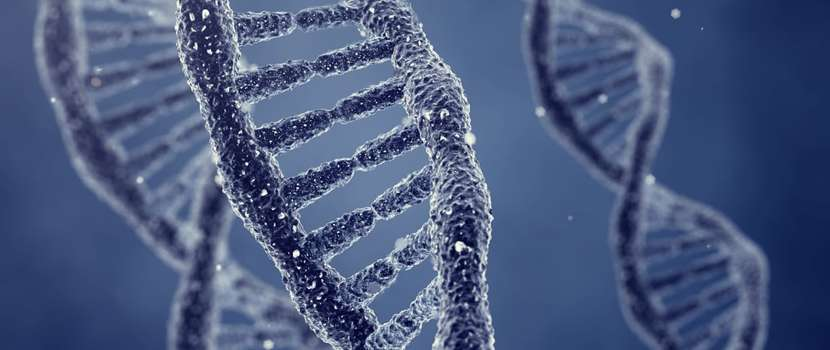 It's in your genes but is it inevitable?